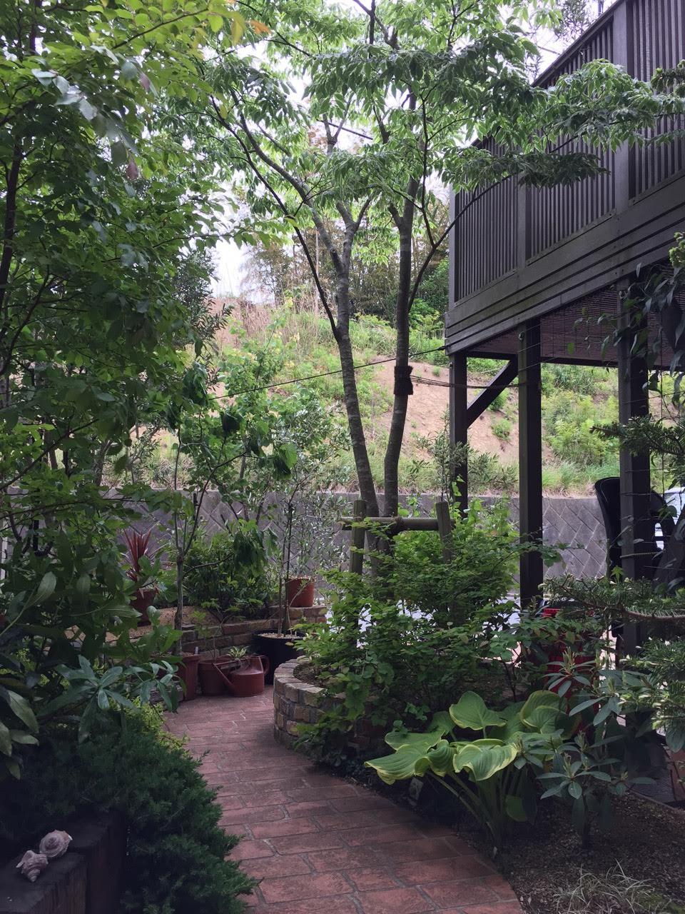 ウッドデッキに植栽 良い景色です