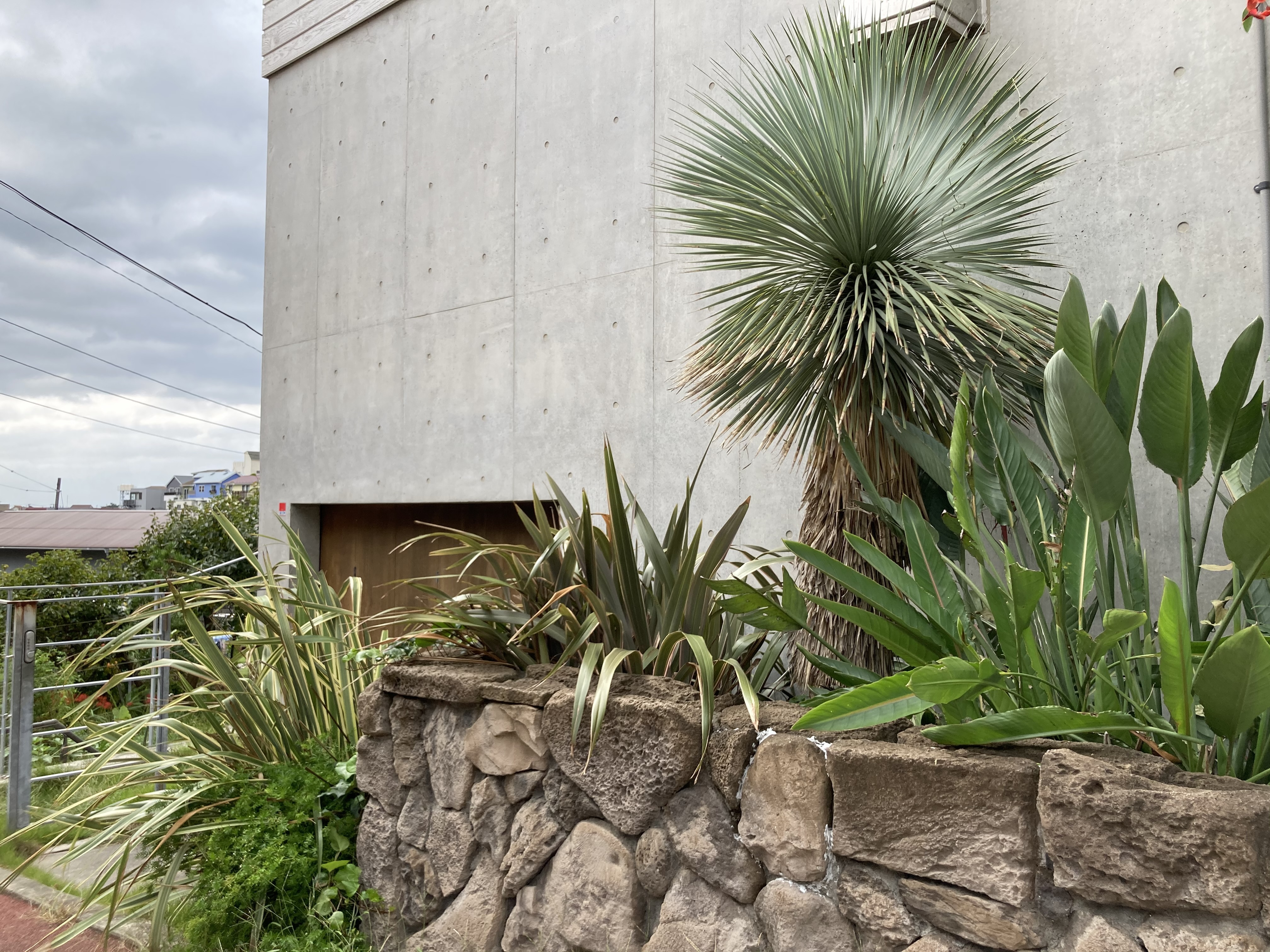 直輸入ハワイの石貼り Hawaii Stone