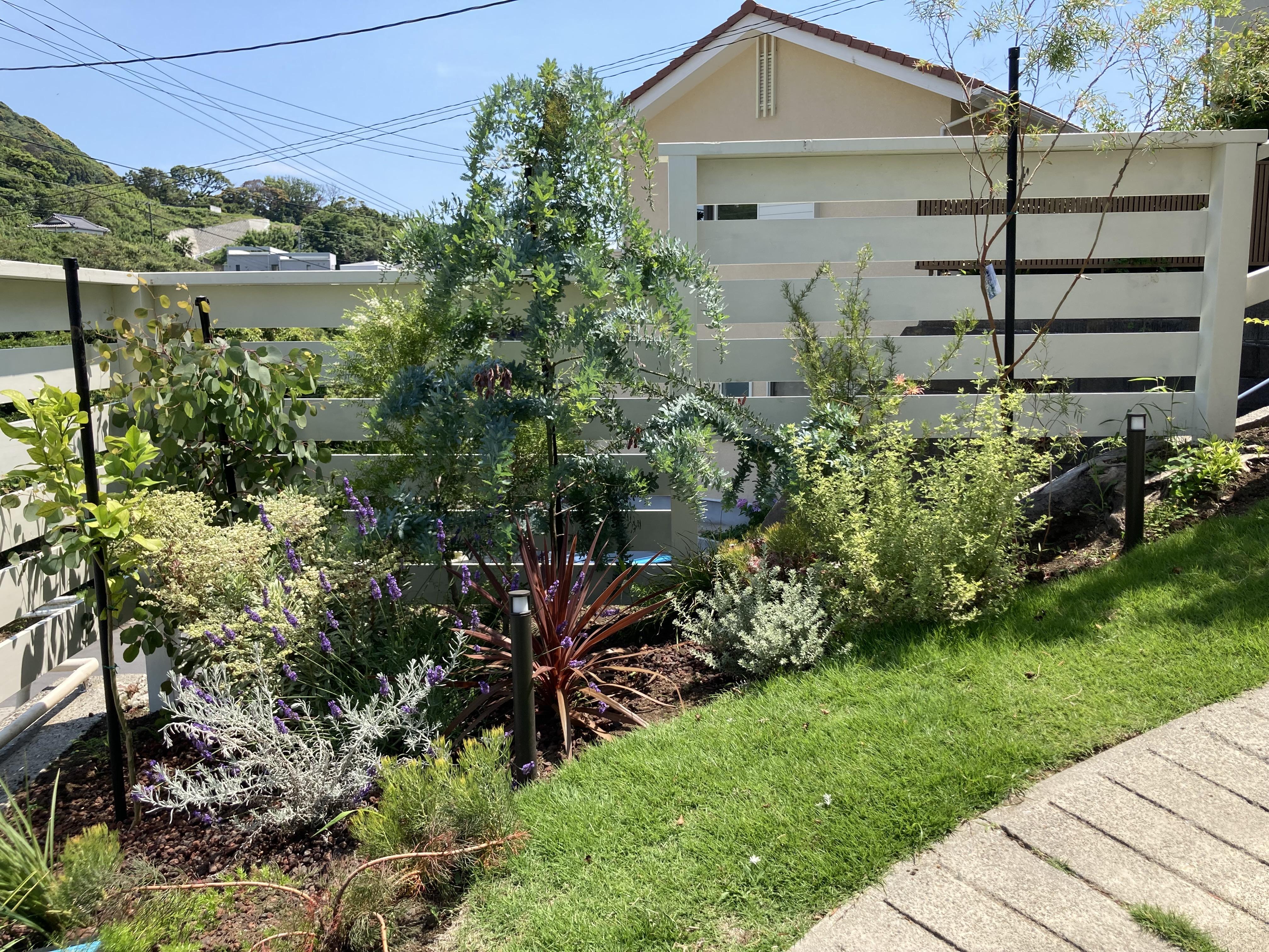 小径の植栽 順調に成長。 フェンスもレトロに仕上げ