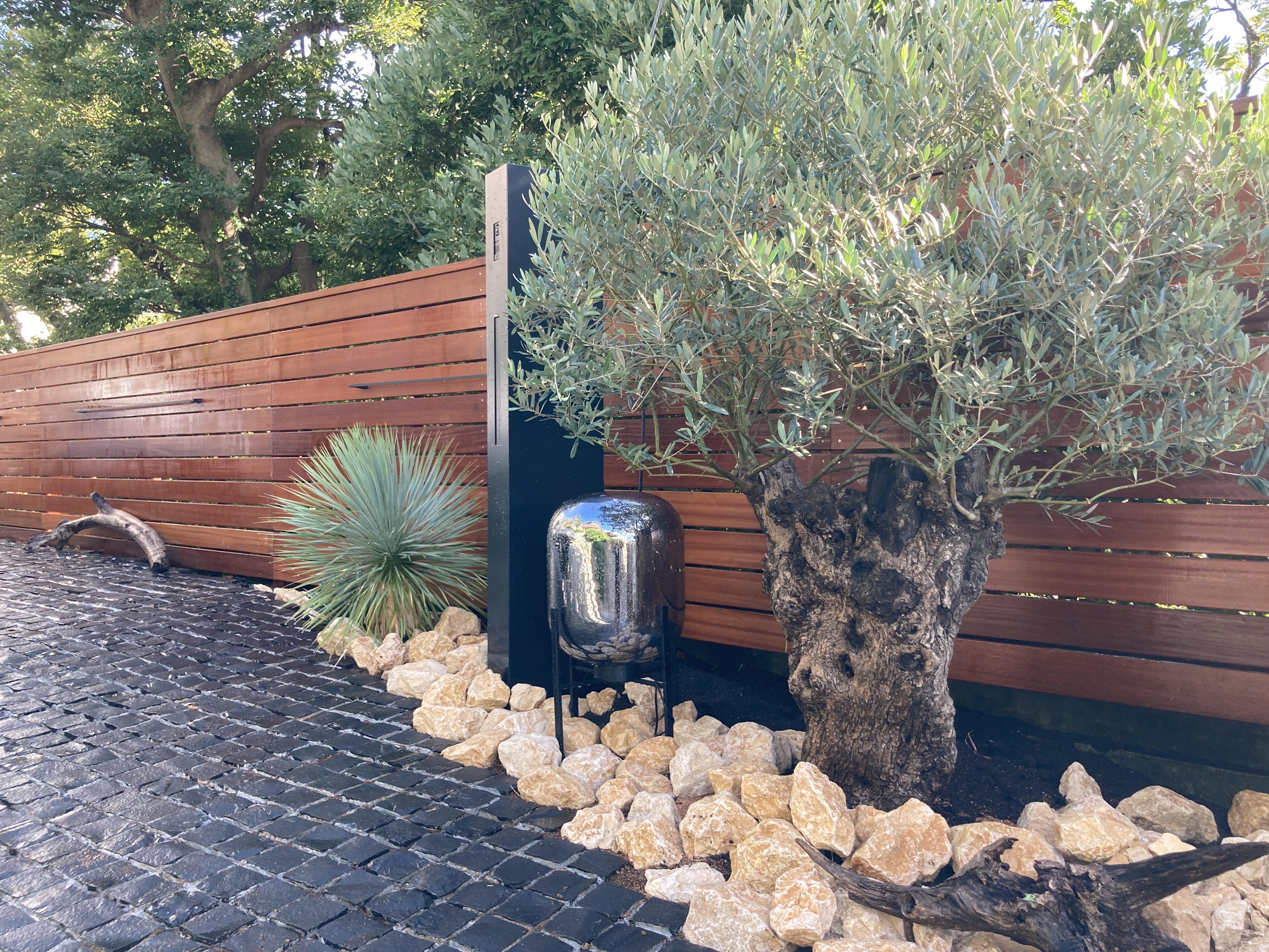 古木オリーブ 圧倒的存在感  石貼り&ウッドフェンス